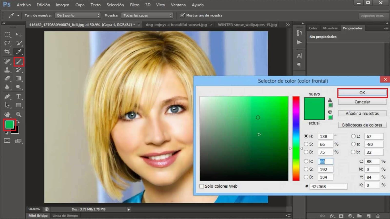 herramienta pincel y seleccionar color